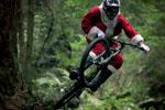 Video vrijdag: Kerst, oud en nieuw