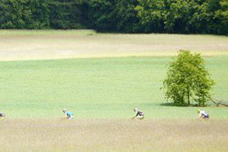 Zondag 10 juni: Montferland Marathon