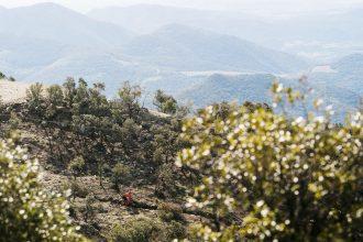 Video vrijdag: enduro is het nieuwe downhill