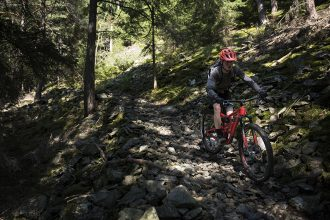 Test: Giant Trance Advanced Pro 29er 2