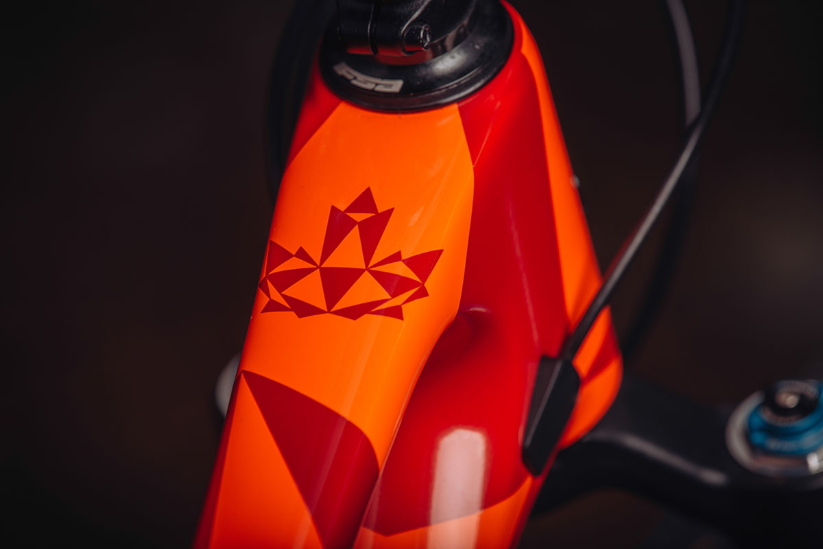 Rocky Mountain Element 2022 – Canadees